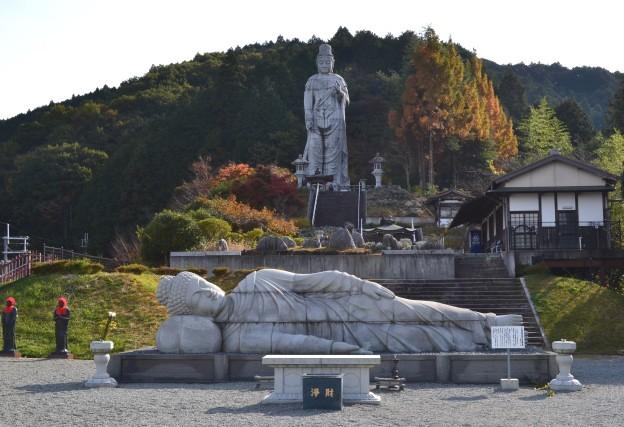 Imo_tsubosaka3