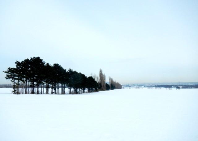 Imo_snow12