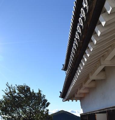 Imo_inuyama2