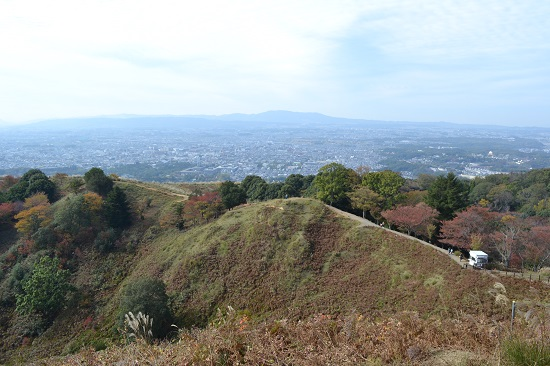 Imo_wakakusa12