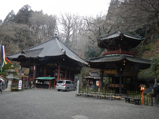 Imo_mizu3