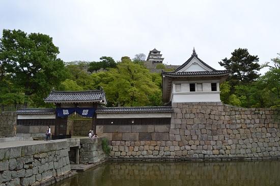 Marujyo1