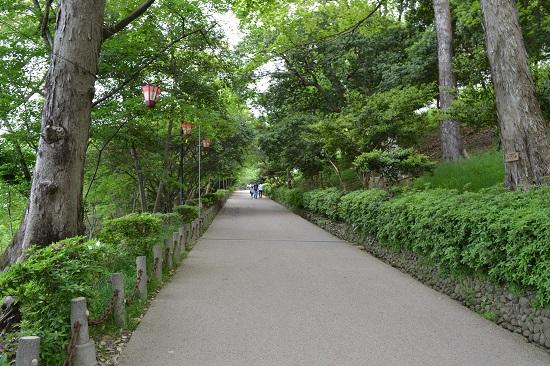 Marujyo2